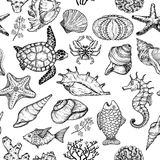 Seamless pattern with sketch of sea shells, fish, corals and turtle. Ocean life. Vector illustration Stock Image