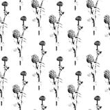 Seamless pattern with sketch Zinnia flowers, floral decor black and white. Vector Illustration. Seamless pattern with sketch Zinnia flowers, floral decor black vector illustration