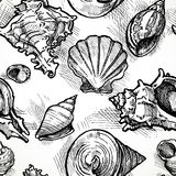 Seamless pattern from sketches of different shapes shell. Vector Stock Photo