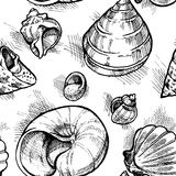 Seamless pattern from sketches of different shapes shell 2. Vector vector illustration
