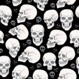 Seamless pattern with skulls on black blackground Stock Image