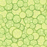 Seamless pattern of slices of cucumber. Royalty Free Stock Image