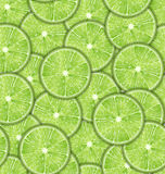 Seamless Pattern Slices of Lime Royalty Free Stock Photo