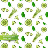 Seamless pattern with slices of vegetables. Cut Royalty Free Stock Images