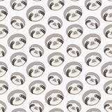 Seamless  pattern with sloths Royalty Free Stock Photography