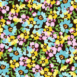 Seamless pattern with small blue flowers, forget-me-not Royalty Free Stock Image