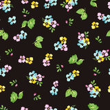 Seamless pattern with small blue flowers, forget-me-not Stock Images