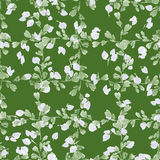 Seamless pattern small green branches and light leaves on a deep green background. Floral background. Watercolor Stock Photography