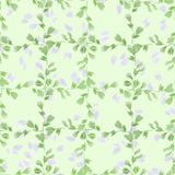 Seamless pattern small green branches and light leaves on a light green background. Floral background. Watercolor stock photos