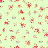 Seamless Pattern with small red roses. Vector seamless Pattern with small red roses Stock Photography