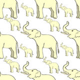Seamless pattern smiling the elephant sideways up the trunk . ve Stock Photography