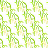 Seamless pattern with a snowdrops. vector illustration Stock Photos