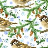Seamless pattern with sparrow winter bird, conifer branch, cones and snowflakes on white. Natural hand painted watercolor illustration with animals on white stock illustration