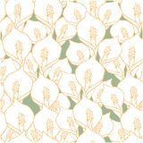 Seamless pattern with spathiphyllum flowers on green stock illustration