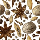 Seamless pattern with spice, drawing by watercolor Royalty Free Stock Photo