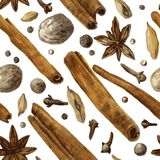 Seamless pattern with spice, drawing by watercolor Stock Photos