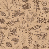 Seamless pattern with spices and herbs on a beige background Stock Images
