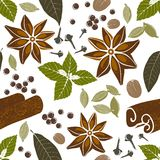 Seamless pattern with spices Royalty Free Stock Image