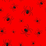 Seamless pattern with spider web on Halloween.  Stock Photography
