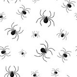 Seamless pattern with spider web on Halloween.  Royalty Free Stock Photography