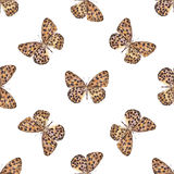 Seamless pattern with spotted beautiful watercolor butterflies. Royalty Free Stock Image
