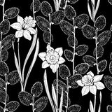 Seamless  pattern with spring flowers daffodils and branch Stock Image