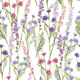 Seamless pattern of spring flowers. Stock Photography