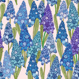 Seamless pattern with spring flowers. Hyacinth Royalty Free Stock Images