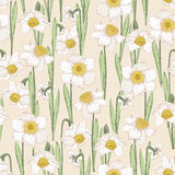 Seamless pattern with spring flowers. Narcissus Royalty Free Stock Photography