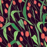 Seamless pattern with spring flowers/Red and orange tulips. For textile, wallpaper, wrapping, web backgrounds and other pattern fills Stock Photos