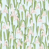 Seamless pattern with spring flowers. Snowdrops Stock Photos