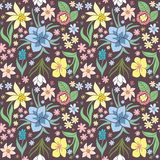 Seamless pattern with spring flowers. Stock Photography
