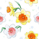 Seamless pattern with spring flowers watercolor. Vector seamless  pattern with a delicate spring flowers, done in watercolors Stock Photos