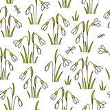 Seamless pattern with spring snowdrops Stock Images