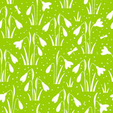 Seamless pattern with spring snowdrops Royalty Free Stock Images