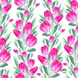Seamless pattern with spring tulips for fabric. Stock Photos