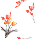 Seamless pattern of spring tulips with red flowers on a white background. Watercolor royalty free stock photography
