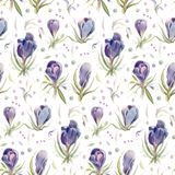 Seamless pattern with spring  watercolor flowers. Royalty Free Stock Image