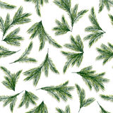 Seamless pattern with spruce or pine branches. Christmas tree. Fabric ornament. Vector, EPS 10 Stock Photo