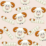 Seamless pattern square cartoon  White Sheep Royalty Free Stock Photo