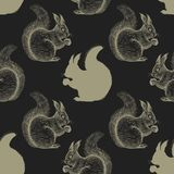 Seamless pattern with squirrel. Stock Photo