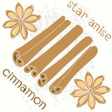 Seamless   pattern with   star anise and cinnamon sticks Stock Photo