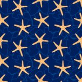 Seamless pattern with star fish. Stock Photos
