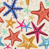 Seamless pattern of starfish Royalty Free Stock Photo