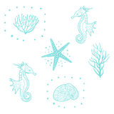 Seamless Pattern With Starfish, Seashells And Sea Horse. Decorative Sea Seamless Pattern Vector. Stock Image
