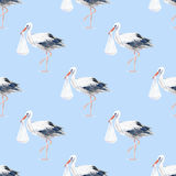 Seamless pattern of a stork and baby. Stock Image