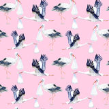 Seamless pattern with Stork and baby. Stock Image