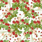 Seamless pattern with strawberries. Decorative background with strawberries and leaves Stock Images