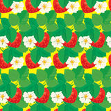 Seamless pattern with Strawberries with flowers Stock Photography