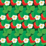 Seamless pattern with Strawberries with flowers and leaves. Royalty Free Stock Images